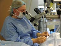 Veterinary Hospital Ophthalmology
