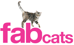 Links to: International Cat Care