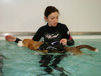 specialist procedures hydrotherapy